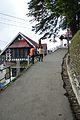 Jakhoo Road - Shimla 2014-05-07 1002.JPG