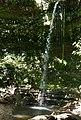 Jamaca Waterfall ... (48359240662).jpg