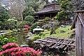 Japanese Garden 2 (214349987).jpeg