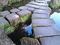 Japanese Tea Garden (4594245283).jpg