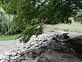 Jazierko bez vody - panoramio.jpg