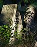 Jewish cemetery Otwock Karczew Anielin.jpg