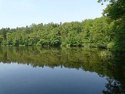 Jezioro Płytkie.jpg