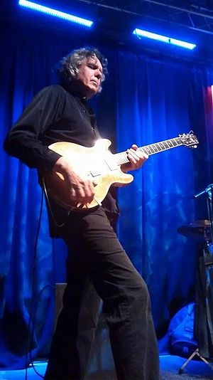 John Etheridge - Etheridge on stage in 2015