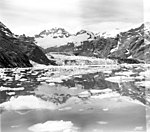 Johns Hopkins Glacier, terminus of tidewater glacier with lots of icebergs in the water, undated (GLACIERS 5483).jpg