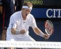 Jonas Björkman US Open 08.jpg