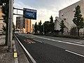 Kagoshima Prefectural Road No.204 near Mishima Village Office.jpg