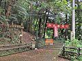 Kaisho Woodland Path.jpg