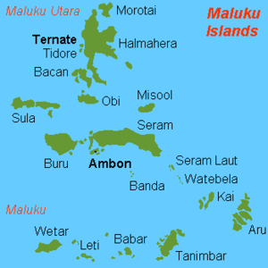 Treaty of Zaragoza - Map of the Moluccas, showing Ternate and Tidore