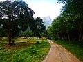 Khao Sok, 2014 December - panoramio (77).jpg