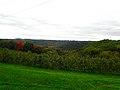 Kickapoo River Valley - panoramio (1).jpg