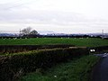 Killinure Townland - geograph.org.uk - 1618084.jpg
