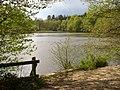 Kiln Pond Benyons Inclosure.jpg