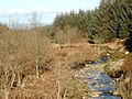 Kinharvie Burn, from the forestry road bridge - geograph.org.uk - 714305.jpg