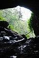Kitum Cave Mount Elgon Kenya.jpg