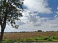 Klütz, Germany - panoramio - Foto Fitti (1).jpg