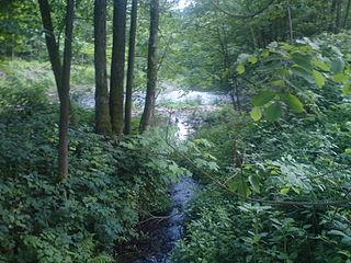Kleine Steinau river in Germany