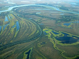 Kobuk Valley National Park - Meanders in the Kobuk River from the air