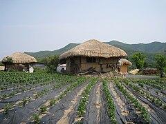 Korea-Andong-Hahoe Folk Village-10.jpg