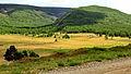 Krajobraz w Parku Narodowym Gorchi-Tereldż 03.JPG