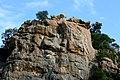 Kruger National Park, South Africa (8341007447).jpg