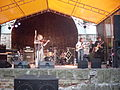 Krzak - live in Katowice 1.jpg