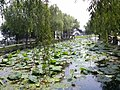 Kunshan, Suzhou, Jiangsu, China - panoramio (162).jpg