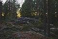 Kylmäkorvenkallion pronssikautinen hautaröykkiö 03.jpg