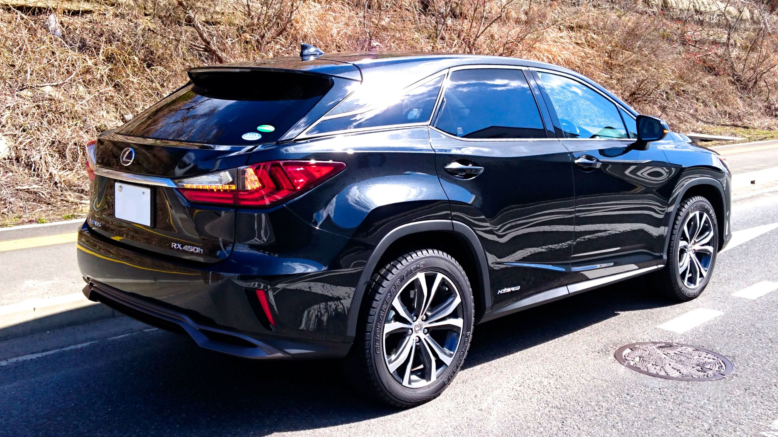 LEXUS RX450h 2016 JAPAN REAR.JPG