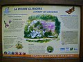 "La ""Pierre Glissoire"" - panoramio (2).jpg"