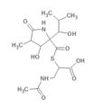 Lactacystin.png