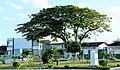 Lajedão - BA - panoramio (2).jpg