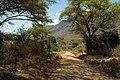 Lake Manyara road.jpg