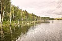 Lake near Tarnoga.jpg