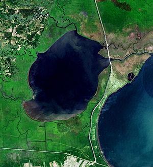 Lake Maurepas - Landsat view of the lake bordered at right by Lake Pontchartrain