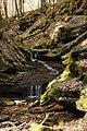 Landschaftsschutzgebiet Nagoldtal (8 Teilgebiete), Kennung 2.35.037, Lützengraben, Wildberg 19.jpg