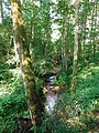 Laufbachwasserfälle Loffenau 1.jpg