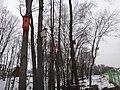Leninsky District, Moscow Oblast, Russia - panoramio (109).jpg