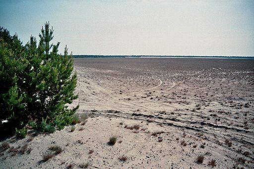 Welttag Wüstenbildung