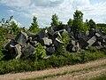 Limestone blocks by a Tapp Road quarry, Bloomington, Indiana - 20100619-06.jpg