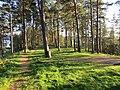 Linkmenų sen., Lithuania - panoramio (36).jpg