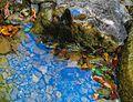 Little life-saver in Velebit Mountains.jpg