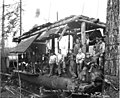 Logging crew and donkey engine next to spartree, Florence Logging Company, ca 1916 (KINSEY 143).jpeg