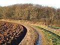 Long Thwaite Wood - geograph.org.uk - 308648.jpg