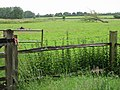 Looking E from Wingham to open farmland - geograph.org.uk - 477438.jpg