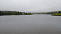 Lower Pond - Witless Bay, Newfoundland 2019-08-09.jpg