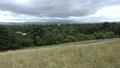 Loz phoenix park view.png