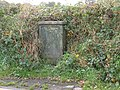 Lucy Pillar in a hedgerow - geograph.org.uk - 1567288.jpg