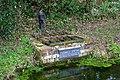Ludwell Spring, Horsted Keynes - detail - geograph.org.uk - 1755129.jpg