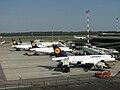 Lufthansaitalia.jpg
